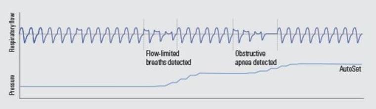 APAP diagram.jpg