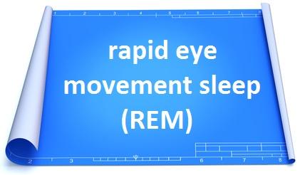 REM sleep stage 5 sleep