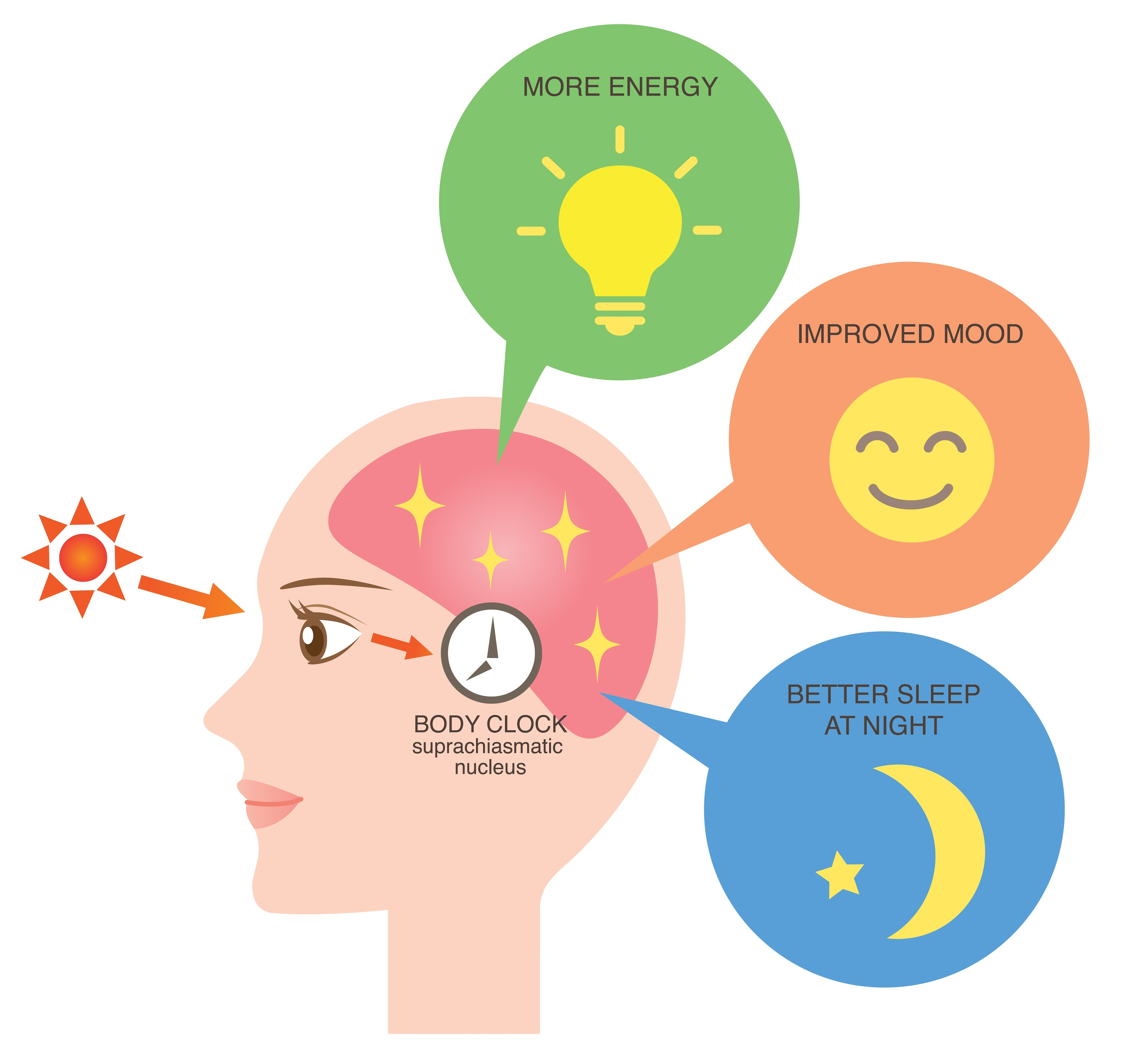 body_clock_and_light_therapy