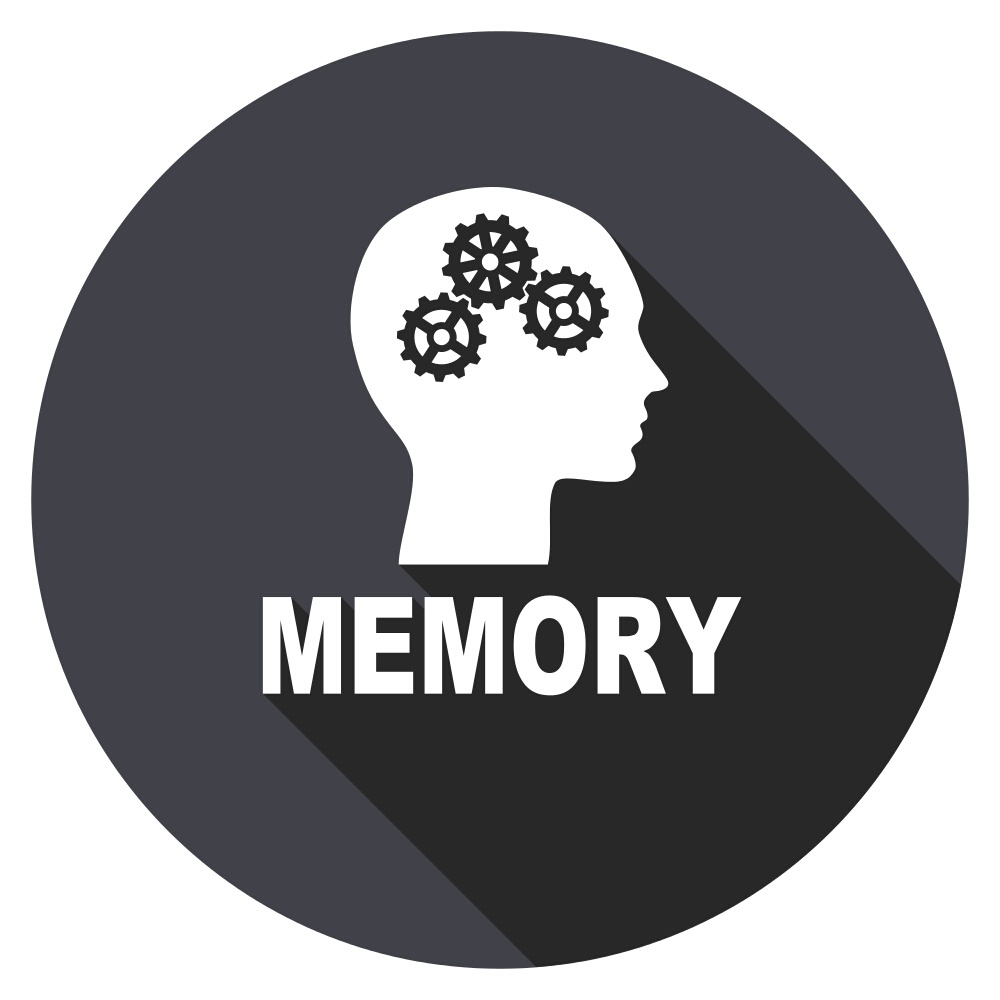 Memory is consolidated during REM sleep