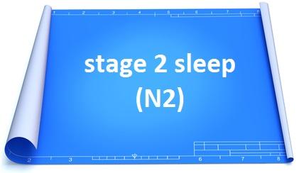 stage 2 sleep