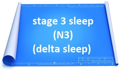 stage 3 sleep deep sleep delta sleep