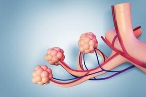 COPD-air sac